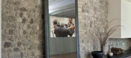 mirror_tv_4